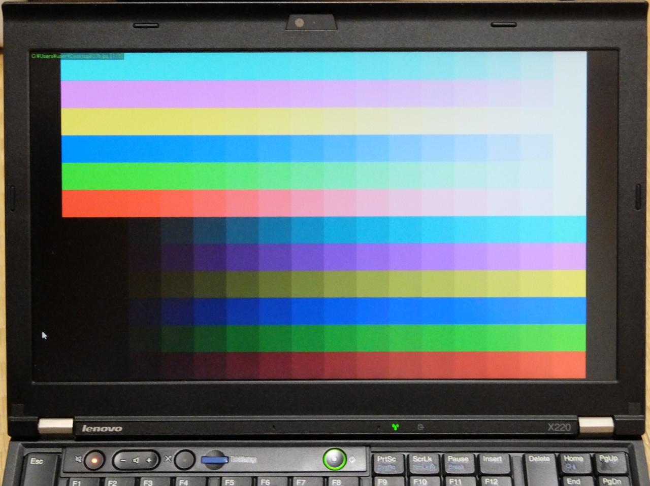 ThinkPad X220 の TN 液晶を IPS に交換 – くらつきねっと